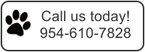 Wilton Manors Dog Grooming